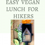 Easy Vegan Lunch for Hikers